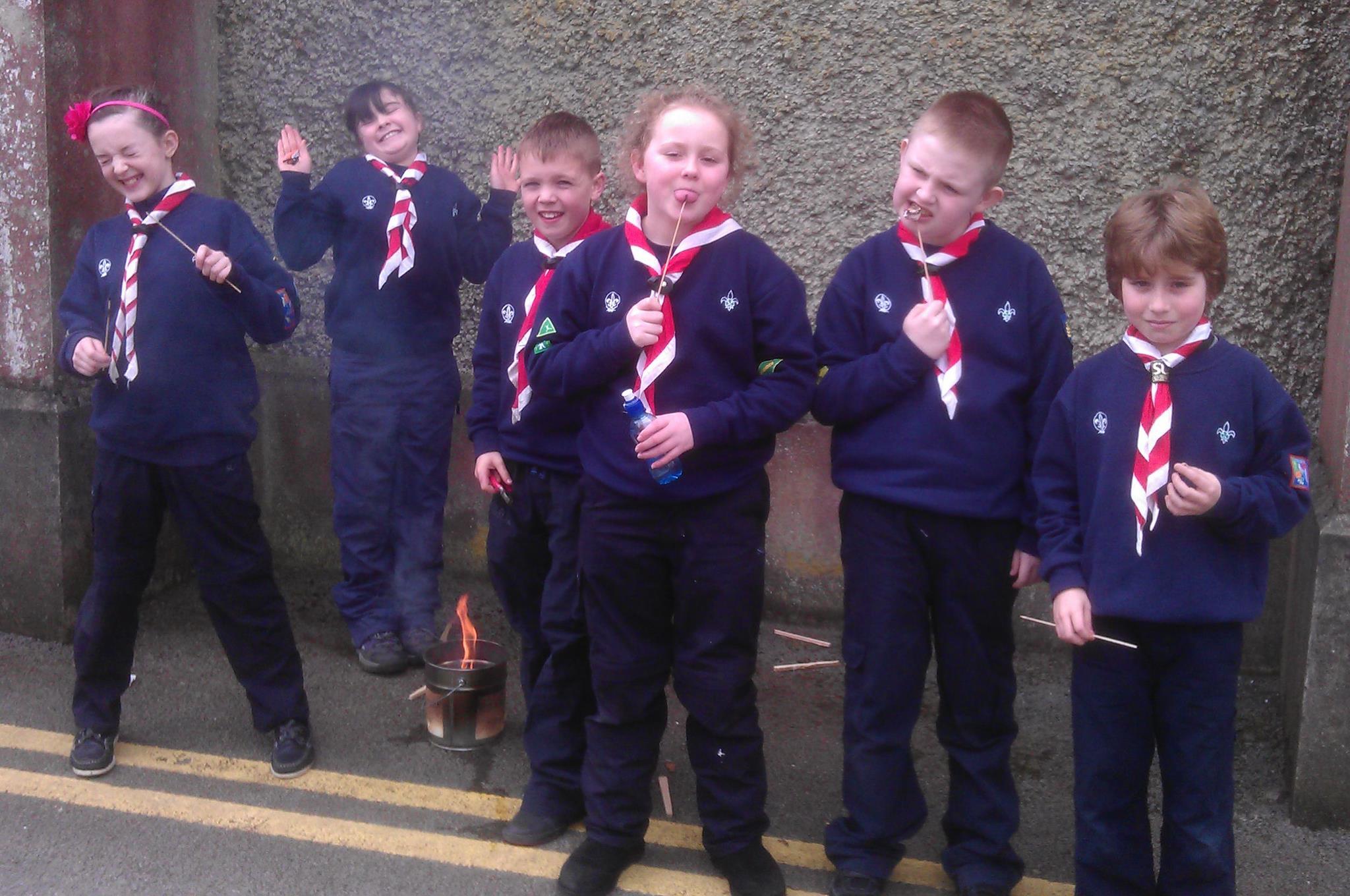 13th DLS Scouts Who are the Leaders? De La