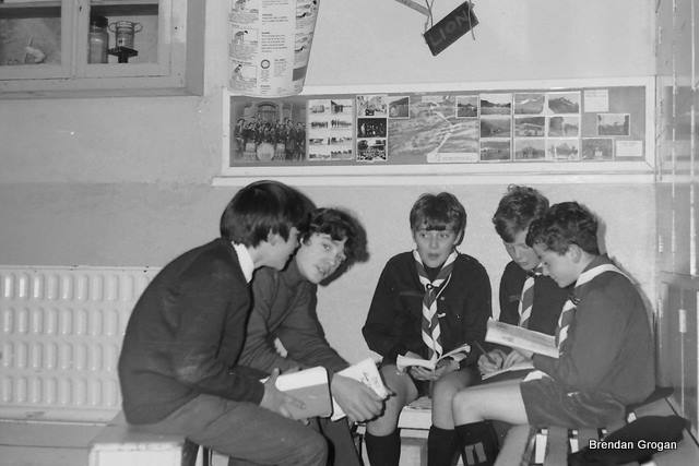 Archive picture 1971 The Lion Patrol 7th Troop in the scout hall doing test work.  Seamus Quilty, Padraig Forristal, Frank Grogan, Ben Furlong, David Brazil. Note the Bean Tin Trophy in the press top right...